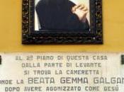 Lorenzo Viani, Lucca Santa Gemma Galgani
