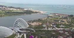 Borile sbarca Asia l'importatore Singapore Minerva Motor Ltd.
