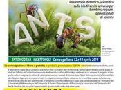 week-end insetti EntoModena Insettopoli
