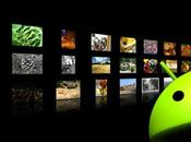 Galleria fotografica ecco migliori applicazioni Android