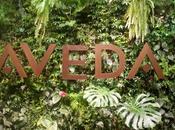 Aveda Mese della Terra: l'iniziativa green!