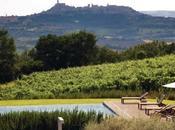 Umbria l'azienda Roccafiore Todi estate organizza safari vigneti uliveti