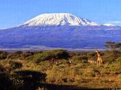 Parco Nazionale Kilimangiaro