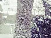 dove Canada freddo?