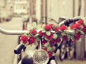 bike trend