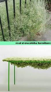 rubrica _design your life ETERNAL GYPSOPHILA