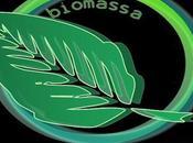 30/04/2014 Biomassa, filiera crescita: 2020 Italia Paesi europei ricchi bioenergia potenzialità settore raccontate mcTER Forest Milano, giugno