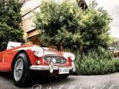 british motor club