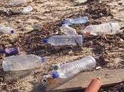 Sulle spiagge allarme rifiuti spiaggiati: Comuni rivieraschi intensifichino raccolta
