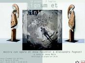 MILANO: Lignum Cinis opere Anna Facchini Alessandro Pagnoni Plaumann Gallery