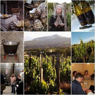 Press Tour Sicilia en Primeur 2014 a Tenuta di Fessina. La grande bellezza dell'Italia del vino