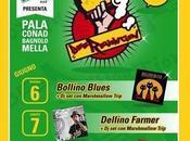 Beerevolution Festival 2014. I°edizione avra' luogo presso Palaconad Bagnolo Mella (BS), giugno