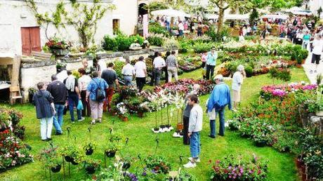 I vivai romiti di pistoia premiati al floralies di nantes for Piante da frutto pistoia