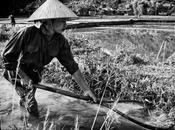 Nimble fingers: storia delle operaie vietnamite nelle fabbriche straniere