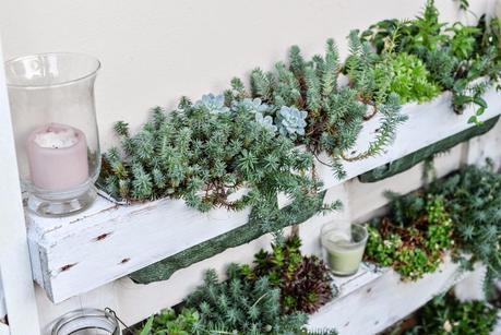 Giardino romantico piante e fiori profumati paperblog for Arbusti profumati da giardino
