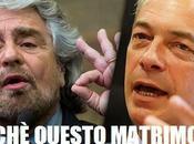 Grillo Farage, perchè questo matrimonio s'ha fare?