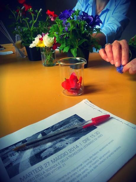 Valagro one concime tutto in uno paperblog for Concime per gerani fatto in casa