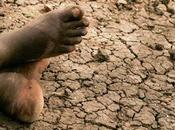 Allarme siccità carestia Gibuti Intervento delle Nazioni Unite