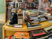 libreria, AUDUR OLAFSDOTTIR, L'ECCEZIONE, EINAUDI dall'autrice ROSA CANDIDA