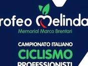 Campionato italiano 2014 (Trofeo Melinda), Ecco percorso