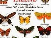 Farfalle Falene, Libro David Carter