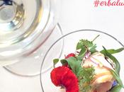 #erbalucemi: vino territorio canavese cammino verso expo 2015