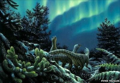 Antartide i misteri dell 39 antica foresta pluviale paperblog - Gli animali della foresta pluviale di daintree ...