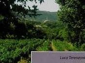 """Recensione """"Primavera Borgogna"""" LaRecherche.it"""