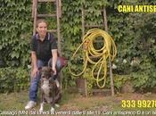 Operazione Cani Antispreco