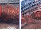 Archeologia Sardegna. Pala Larga, domus janas spettacolare stata sigillata tutelare colori interni.