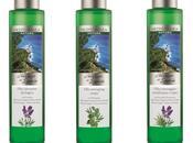 Mediterranea: Terrazze Liguria prodotti valorizzano Riviera Fiori