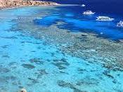 Vacanze Natale caldo Sharm Sheikh Maldive