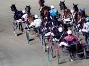 Ippica: belle corse mercoledì all'ippodromo Vinovo