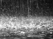 pioggia lacrime estive