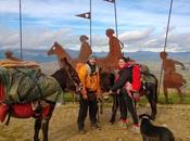 Cammino Santiago: Nove Mesi Passo Lento Asini