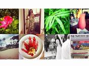 #ArmadioDiVenere #Instagram