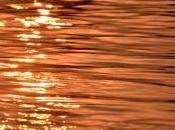 Sugli Hippie Fanno Bagno Gange
