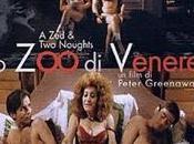 Venere Peter Greenaway