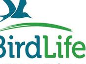 Uccelli: nuove specie rischio