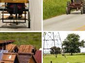 Amish, cookies Paese dalle grandi opportunita'