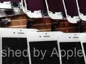pannello frontale dell'iPhone viene mostrato foto