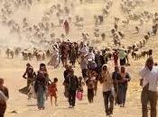 Iraq, droni coccodrillo