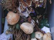 Cimitero Maggiore Crema, cestini usati rifiuti domestici