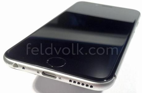 iPhone 6: prime foto scocca posteriore e pannello frontale insieme