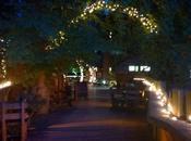 Treehouse, ristorante sull'albero