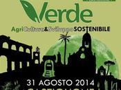 Notte Verde AgricUltura Sviluppo Sostenibile Domenica agosto alle 19.00 Castiglione D'Otranto, Puglia, Italy