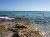 #MyFood&TravelTips: Formentera