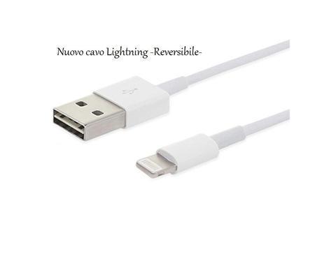 Cavo reversibile Lightning