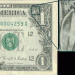 dollarOwl2
