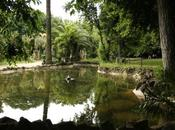 fontana dalla grande Vasca Villa Sciarra